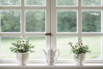 Decorative plant pots on window ledge
